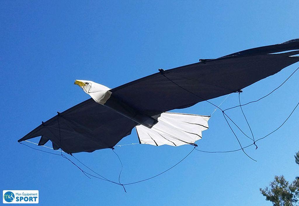 Cerf-Volant Acrobatique Revolution Eagle
